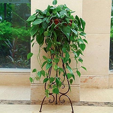 Zaiyi Européenne Stand De Fleur En Fer Forgé Salon Sol-fleur Jardin Des Fleurs,Bronze-34*28*75cm