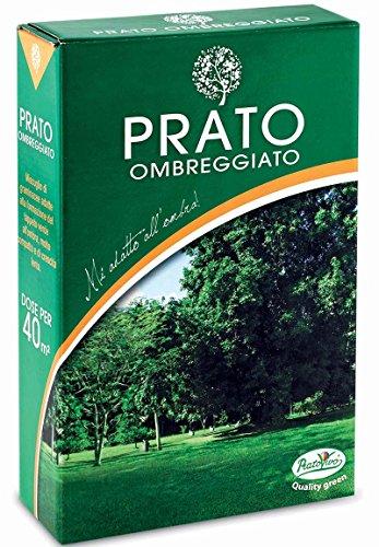 Hortus 62GRAX56E Seme Ombreggiato Prato, 1 kg, 18x6.5x27 cm