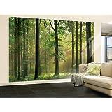 papier peint photo mural for ts 216p 350x260 cm 7 l s chague 50cmx260 cm haute qualit. Black Bedroom Furniture Sets. Home Design Ideas