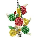 Macrorun Pet Parrot jouet coloré Bird Boule de Bell pour perruche calopsitte élégante à mâcher Fun Cage