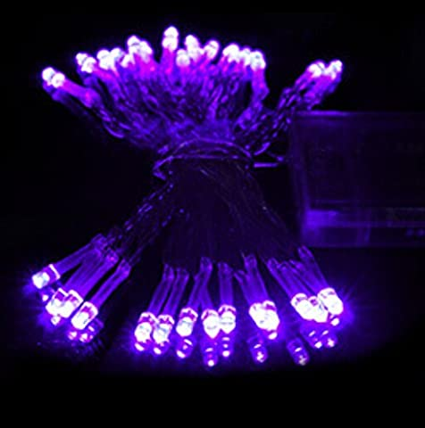 Liroyal 4M 40 LED Purple Battery String Lamp Light Fairy Christmas Party