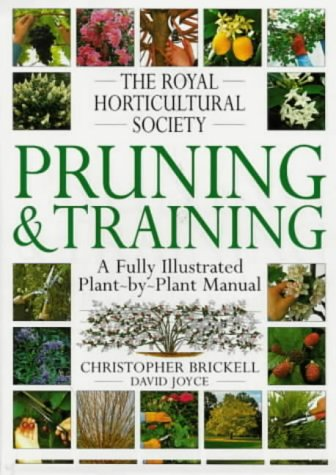PRUNING TRAINING (RHS) por Christopher Brickell