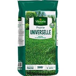 Vilmorin 4477516 Prairie Universelle, Vert, 13 x 40 x 69 cm