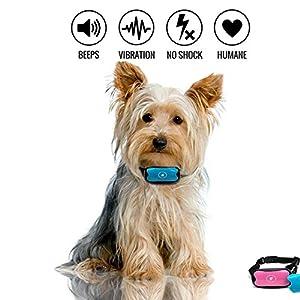 Collier d'écorce anti, collier d'aboiement de chien d'arrêt, aucun collier d'entraînement de contrôle d'écorce de choc, pour de petits, moyens, et grands chiens, inoffensif et sûr d'écorce de dissuasi
