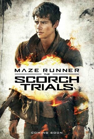 MAZE RUNNER : THE SCORCH TRIALS – Thomas – US Movie Wall Poster Print - 30CM X 43CM