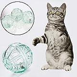 CricTeQleap Spielzeug f¨¹r Haustiere, 10pcs Haustier-Katze-K?tzchen-lustiges Transparentes Ball-Spiel-Spielzeug-Teaser-wechselwirkende Bell-Satz