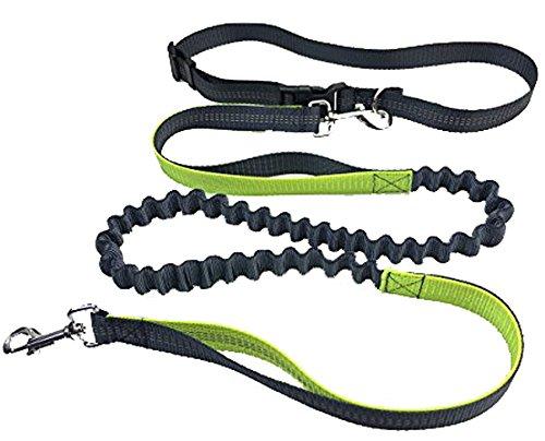 Longwu Einstellbare Haustiere Traktionsseil Nylon Reflektierende Draht Hundeleine und Gürtel 1.6M-1.9M Grün