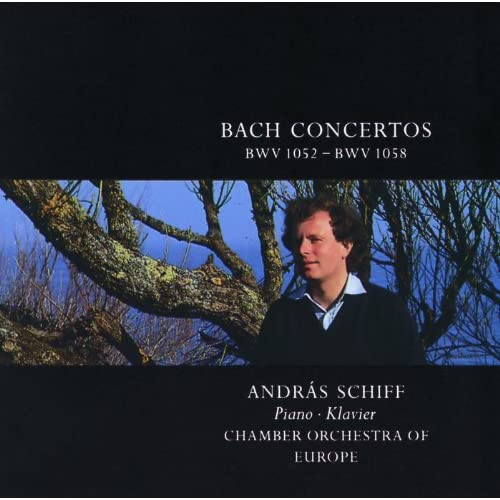 J.S. Bach: Concerto for Harpsichord, Strings, and Continuo No.1 in D minor, BWV 1052 - piano performance - 2. Adagio