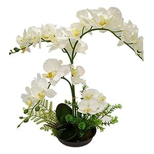 LianLe Orquídeas Artificiales Mariposa Flor Planta de Imitación Decoración de Casa,Green