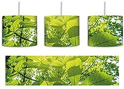 Grüne Blätter inkl. Lampenfassung E27, Lampe mit Motivdruck, tolle Deckenlampe, Hängelampe, Pendelleuchte - Durchmesser 30cm - Dekoration mit Licht ideal für Wohnzimmer, Kinderzimmer, Schlafzimmer