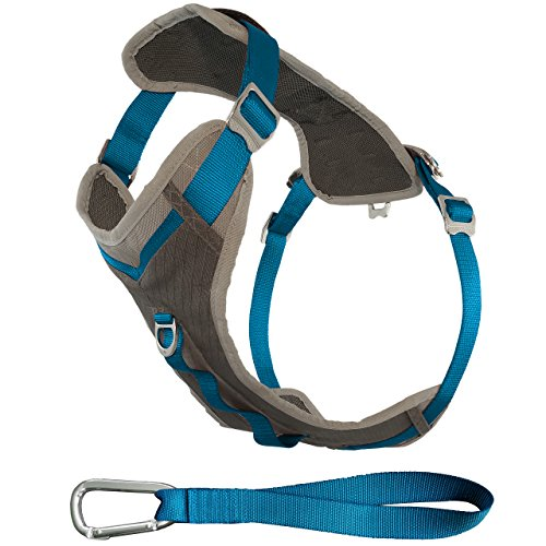Kurgo Journey (TM) Dog Running Geschirr, Hundegeschirr, Walking Hund wandern Geschirr, Hundegeschirr, Small, grau/blau (Front-pull-harness)