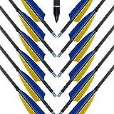 MEJOSER Recurvebogen Pfeile 12 Carbonpfeile Easton Inspire 400 Fertigpfeile Profi für Bogenschießen und 3D Sport