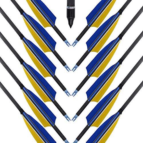 Recurvebogen pfeile 12 Carbonpfeile Easton Inspire 400 Fertigpfeile profi für Bogenschießen und 3D Sport