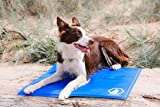 Cool Companion, Cool Pad, Dog & Cat Cooling Mats (Small 50 x 40cm)