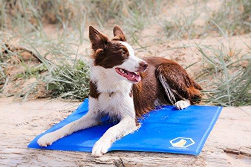 cool-companion-tappetino-refrigerante-per-cani-e-gatti-misura-media-50-x-40-cm