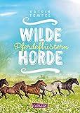 Wilde Horde 2: Pferdeflüstern