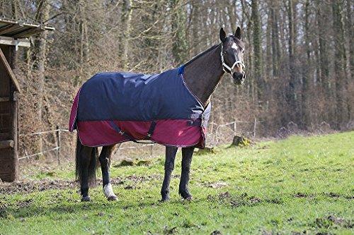Amesbichler Pferde Outdoordecke Weidedecke Equitheme TYREX 1200 Denier 150g Füllung, wasserdicht, atmungsaktiv, Kreuzgurte, Schweiflatz, 155 cm