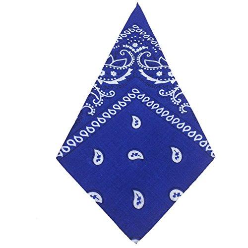 IZHH Herren Damen Fashion Bandana Schal Schöne Print Schwarz, Blau, Grün, Weiß, Lila Square Head Schal Bandanas Headwear Fahrrad Kopftuch (Indische Decke Jacke)