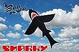 Bee-Kyte Shark Monofil Segelflugzeug Drachen 140 x 170 cm in Scharf-Form - Flugfertig mit Kabel und Speichertrommel einbegriffen