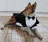 Yongqin Hundekostüm für große Hunde, Smoking für große Hunde, formelle Party-Outfits, geeignet...