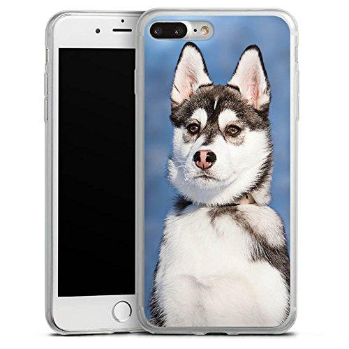 Apple iPhone 8 Slim Case Silikon Hülle Schutzhülle Husky Hund Wolf Silikon Slim Case transparent