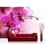Vlies Fototapete 350x245 cm PREMIUM PLUS Wand Foto Tapete Wand Bild Vliestapete - PINK ORCHID - Ornamente Blumen Orchidee Pink Rosa Blumenranke Blumendeko - no. 099