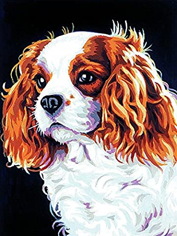 MARGOT/Kit tapisserie Tapisserie de Paris sur toile – Cavalier King Charles
