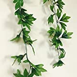 Cryoc Artificial Plant Vines (Value Pack Of 2) Rain Forest Green / Artificial Plants For Living Room / Artificial Plants For Decoration / For Wall Decoration, Wedding Decoration, Party Decoration, Vehicle Decoration, Stage Decoration / Length 8 Feet -Pack
