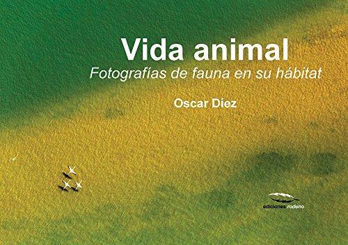 Vida animal: Fotografías de fauna en su hábitat por Oscar Díez Martínez