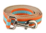 Paw Paws USA Hundehalsband, für die Schule, Small Leash, Multi