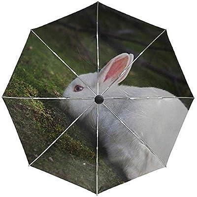 Paraguas automático Rabbit Grass Climb Travel Conveniente a Prueba de Viento Impermeable Plegable Auto Abrir Cerrar