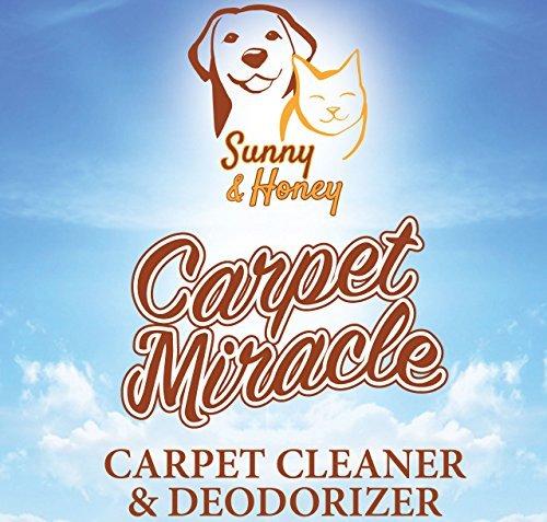 Carpet Miracle–Teppichreiniger und Geruchsentferner für Hoover, Bissell, Rug Doctor, Kenmore (32fl oz bzw 946 ml)