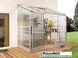 Gartenwelt Riegelsberger Anlehngewächshaus IDA - Ausführung: 5200 HKP 6 mm Alu, Fläche: ca. 5,2 m², mit 1 Dachfenster, Sockelmaß: 1,90 x 2,54 m
