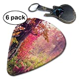 Fairy Majestic Landscape with Autumn Trees in Forest Guitar Picks for Your Electric Acoustic Or Bass Guitar Heavy Medium & Light.46mm