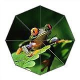 Dollay Me Travel umbralla-windproof KOMPAKT Regenschirme tragbar faltbar mit verstärkter Rahmen, 8Rippen & 3Aluminium, Custom Wasserdicht Stoff Regen und Sonnenschirm für Damen und Herren, Frosch