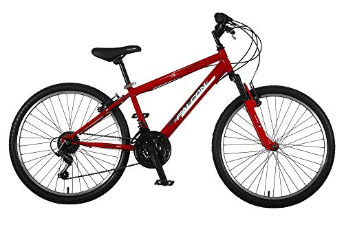 Falcon Boys' F3241003 Raptor B24, Red/Black, 24'' Best Price and Cheapest