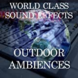 Activity Barn Club House Working Cleanup Movement Crowd People Sound Effects Sound Effect Sounds EFX Sfx FX Natural Ambience Sounds Buildings [Clean]
