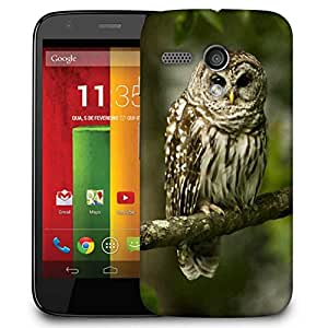 Snoogg Owl Sitting Designer Protective Phone Back Case Cover For Motorola G / Moto G