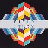 Songtexte von Field Study - Feverland