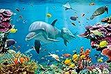 Poster Delfin in Unterwasserwelt in der Karibik - Größe 61 x 91,5 cm - Maxiposter