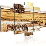 murando - Bilder 100x50 cm - Leinwandbilder - Fertig Aufgespannt - Vlies Leinwand - 5 tlg - Wandbilder XXL - Kunstdrucke - Wandbild - Afrika 030213-18