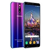 4G Cellulari Offerte , 6.0 'HD 16GB ROM 2GB RAM Batteria 4800 mAh, Fotocamera 8 MP, Face ID, Dual SIM, Smartphone Android 7.0 Smartphone Offerta Del Giorno DUODUOGO J6 plus