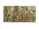 Panel de corcho natural para reptileterrario 60 x 30 cm