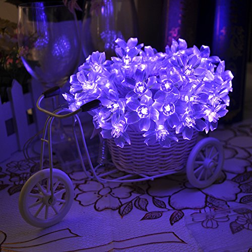 Lychee 4m 40 LED Battery Operated Blossom Fairy luci della stringa per Outdoor Wedding dell'interno Garden Home decorazione della festa di Natale (Viola)
