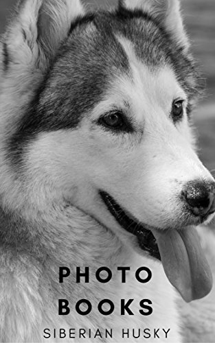 PHOTO BOOKS : SIBERIAN HUSKY DOGS : CUTE SIBERIAN HUSKY DOGS  (PHOTO BOOK DOG 1) (English Edition)