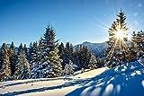 Artland Qualitätsbilder I Wandtattoo Wandsticker Wandaufkleber 120 x 80 cm Landschaften Berge Foto Blau C8CT Winterlandschaft mit Sonnenstern