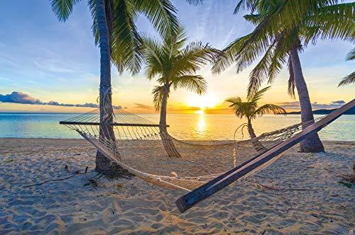 Poster Hängematte am Palm Beach vor Sonnenuntergang