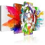 murando - Bilder 200x100 cm - Vlies Leinwandbild - 5 Teilig - Kunstdruck - Modern - Wandbilder XXL - Wanddekoration - Design - Wand Bild - Abstrakt Tiere Löwe Bunt g-C-0019-b-o