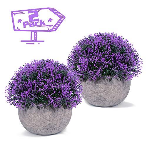Vangold Künstliche Pflanzen Lebensechte Kunstpflanze Lila Kleine Gefälschte Pflanzen mit Töpfe für Zuhause/Büro Innen Decor - 2 Jahre Garantie (2 stücke)
