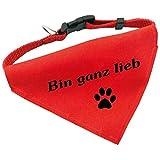 Hunde-Halsband mit Dreiecks-Tuch BIN GANZ LIEB, längenverstellbar von 32 - 55 cm, aus Polyester, in rot